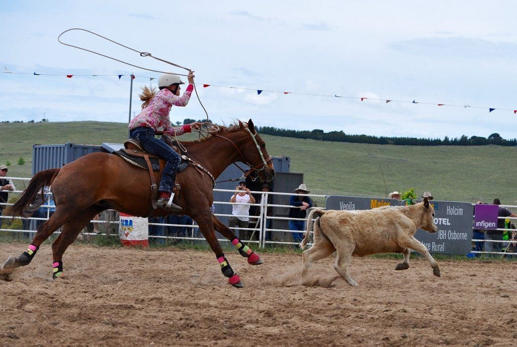 rodeo-1249437_1280